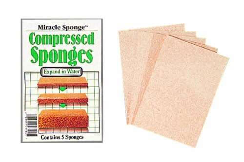 (Color Wheel 3-Inch by 4-Inch Miracle Compressed Sponges)
