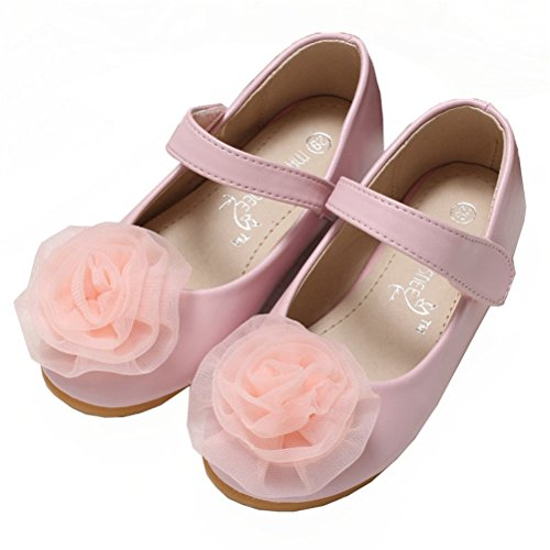 Always Pretty Little Girls Cute Ballet Ballerina Flats Princess Shoes With Flower Pink 9 M US Toddler