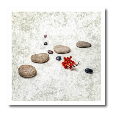3dRose Alexis Photography - Objects Zen - Intersection of stones and pebbles, cluster of red rowan berries. Zen - 10x10 Iron on Heat Transfer for White Material (ht_265666_3)