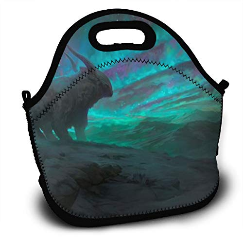 Dejup Lunch Bag Spectacular Aurora Tote Reusable Insulated Lunchbox, Shoulder Strap with Zipper for Kids, Boys, Girls, Women and Men -