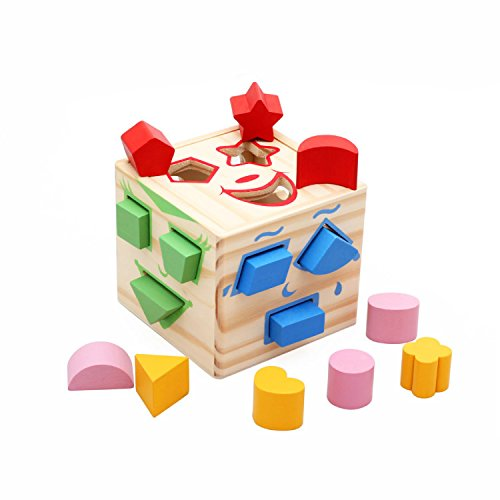 Zoostliss 15 Holes Intelligence Box for Shape Sorter Cognitive and Matching Wooden Building Blocks Baby Kids Children Eductional Wood Toys by Zoostliss