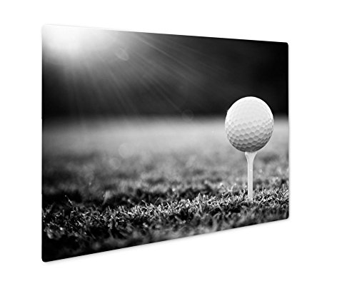 Ashley Giclee Close Up Of Golf Ball On Tee, Wall Art Photo Print On Metal Panel, Black & White, 16x20, Floating Frame, AG4945228