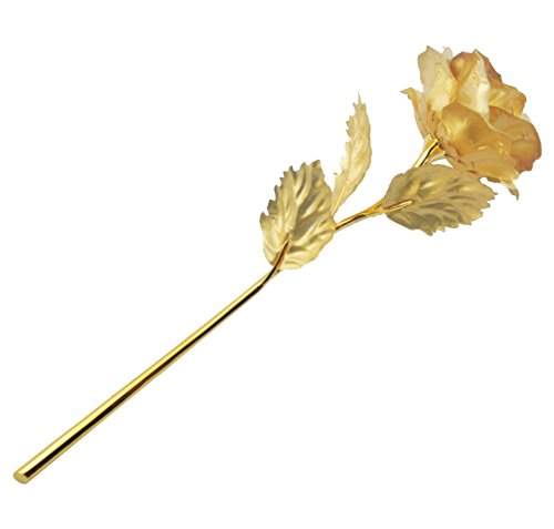 ZJchao 24k Gold Dipped Rose Flowers 10