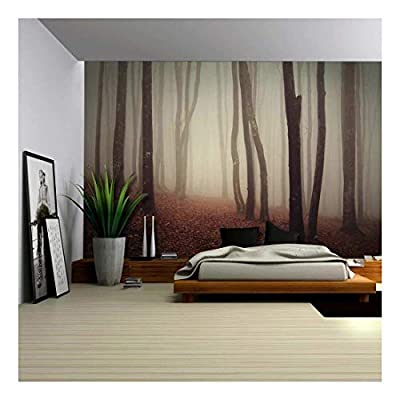 Dark and Mysterious Forest - Wall Mural, Removable Sticker, Home Decor - 66x96 inches