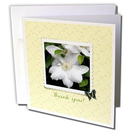 Clock Scalloped (3dRose Beverly Turner Thank You Design - Thank You, Cream Clematis, Scalloped Frame, Butterfly, Flowers, Yellow - 1 Greeting Card with Envelope (gc_282186_5))