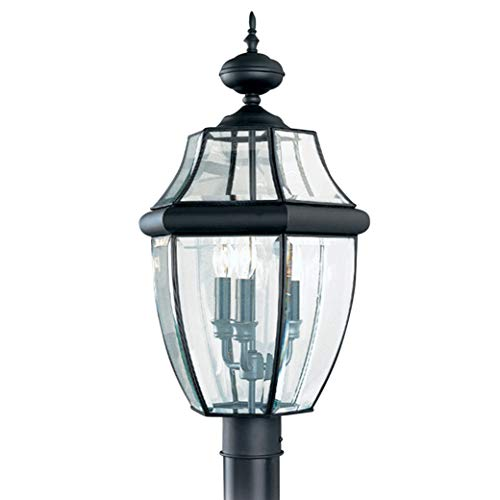 Outdoor Seagull Lighting in US - 1