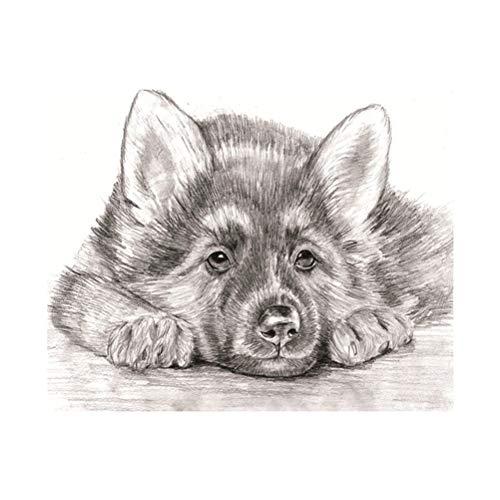 diamond painting kit dog diy