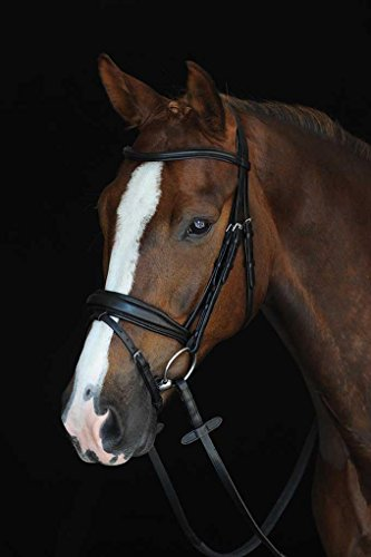 Padded Bridle Raised (Collegiate Mono Crown Raised Flash Cob Brown)