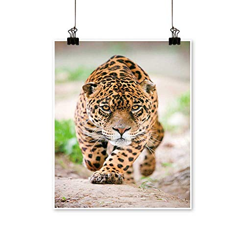 Canvas Prints Artwork Large Jaguar Male Performing for sale  Delivered anywhere in Canada