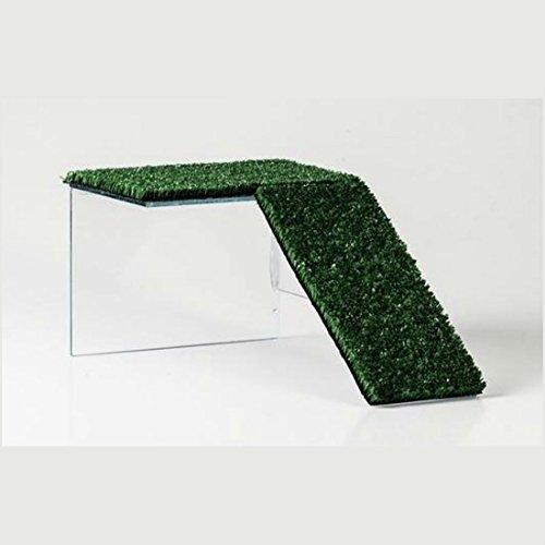 HappyZooMascotas Rampa Plataforma De Cristal para Tortuga - Tamaño - 13x10x20 cm: Amazon.es: Productos para mascotas