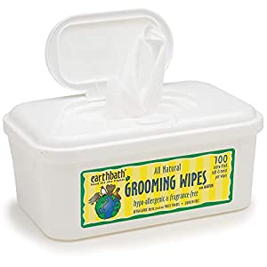 Earthbath All Natural Grooming Wipes 38
