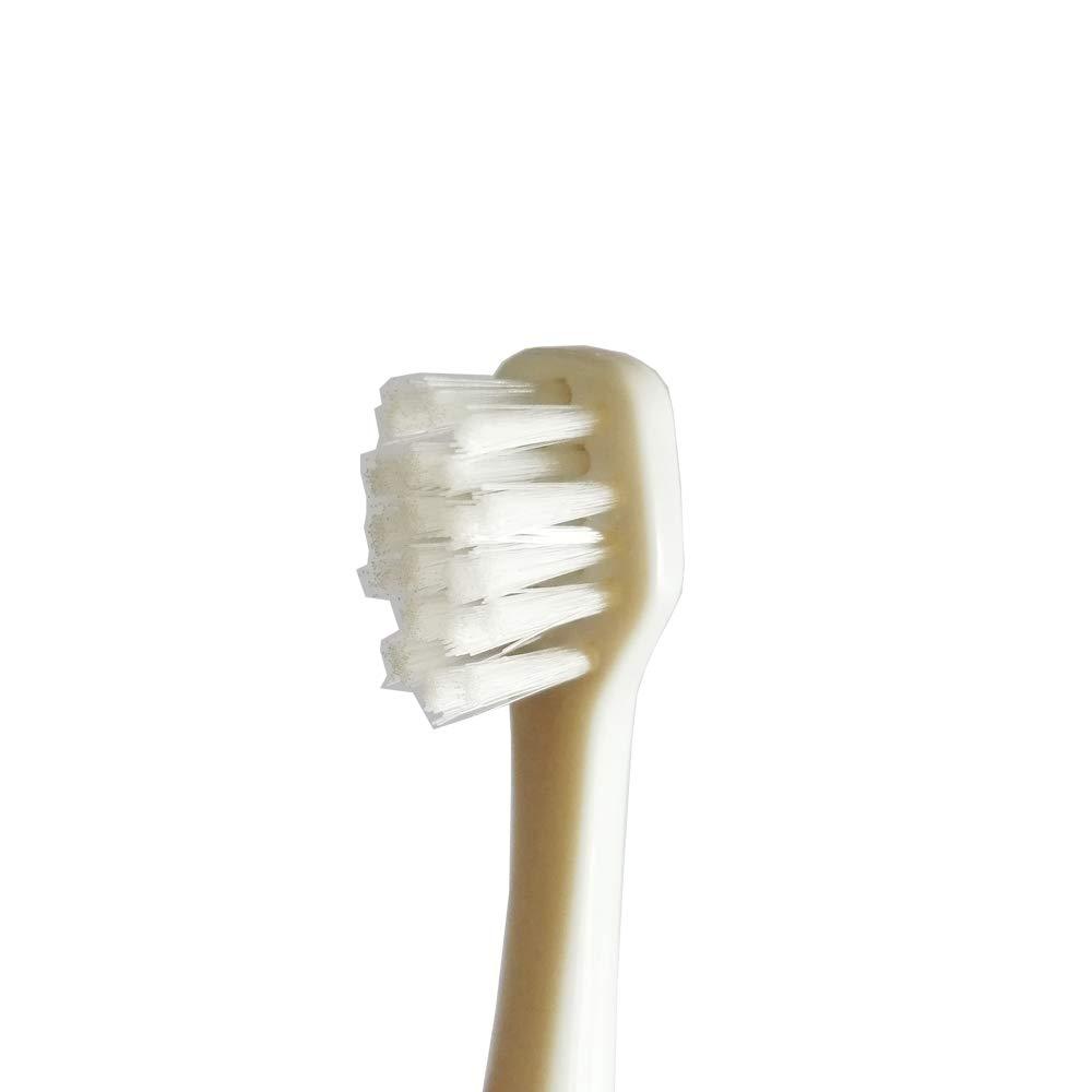 Baby Sonic cabezales de recambio para cepillo de dientes (18 a 36 meses): Amazon.es: Salud y cuidado personal