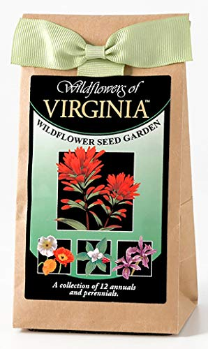 Virginia Wildflower Seed Mix - A Beautiful Collection of Twelve Annuals and Perennials - Enjoy The Natural Beauty of Virginia Flowers in Your Own Home Garden