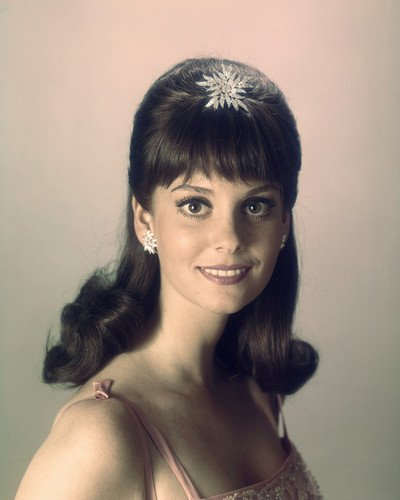 Lesley Ann Warren pure country