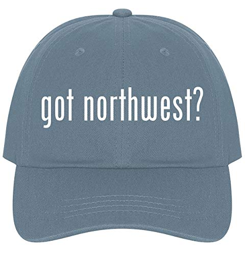 (got Northwest? - A Nice Comfortable Adjustable Dad Hat Cap, Light Blue )
