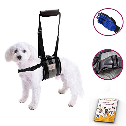Veterinarian Approved Dog Support Harness + Hair Remover Glove – Dogs Sling Lift for Paralyzed Legs – Adjustable Straps – Mobility Rehabilitation for Injured Arthritis Elderly Disable