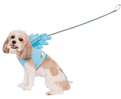 My Little Pony Costume For Dogs (Rubies Costume My Little Pony Rainbow Dash Wing Harness Pet Costume, Small)