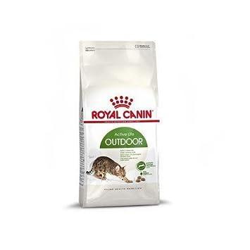 Royal Canin Comida para gatos Outdoor 2 Kg: Amazon.es: Productos para mascotas