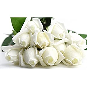 FiveSeasonStuff 10 Stems of Real Touch Silk Roses 'Petals Feel and Look like Fresh Roses' Artificial Flower Bouquet for Wedding Bridal Office Party Home Decor 10