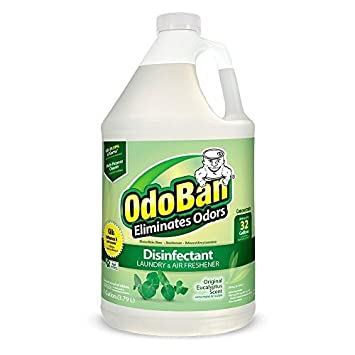 OdoBan Disinfectant Odor Eliminator and All Purpose Cleaner Concentrate, , 128 oz (1, Eucalyptus)