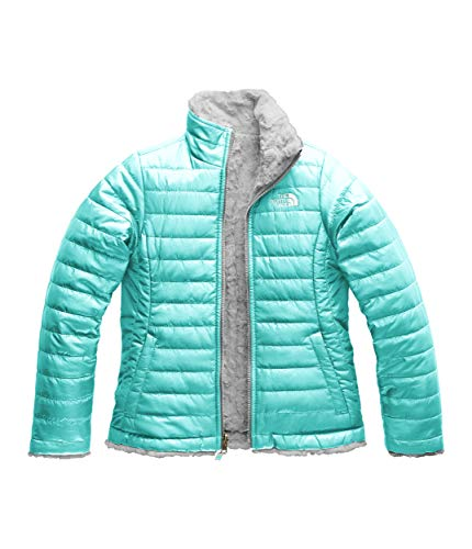 (The North Face Kids Girl's Reversible Mossbud Swirl Jacket (Little Kids/Big Kids) Mint Blue/Metallic Silver Large)