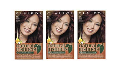 Clairol Natural Instincts Hair Color, 4RV Egyptian (Plum Burgundy Brown) 1 Kit (Plum Dye)
