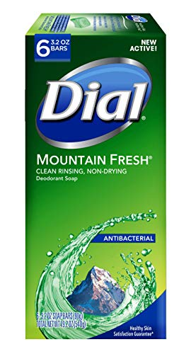 dial bar soap mountain fresh - 8