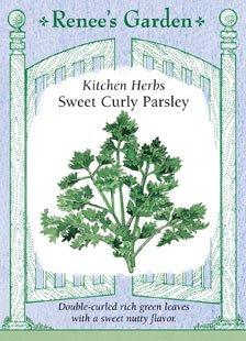 Parsley - Sweet Curly Seeds