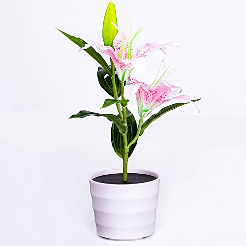 Easter Lily Plant Flowers (Adeeing Solar Powered Energy Saving Pink Lily Flower LED Decorative Plant Garden Light Lawn Lamp Waterproof)