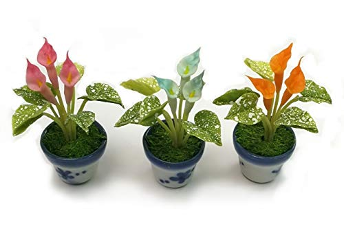 The Best Buy Set of 3 Dollhouse Miniature Accessories Peace Lily in Ceramic Pots from The Best Buy