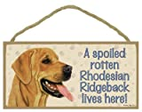 (SJT60710) A spoiled rotten Rhodesian Ridgeback lives here wood sign plaque 5