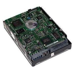 HP StorageWorks 300GB 10k RPM SCSI Disk Drive - Disco duro