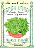 Lettuce - Container - Sweetie Baby Romaine
