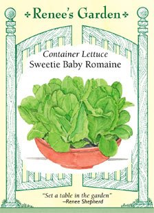(Lettuce - Container - Sweetie Baby Romaine)