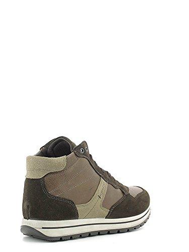 Igi&Co 6679 Sneakers Uomo Caffè 41