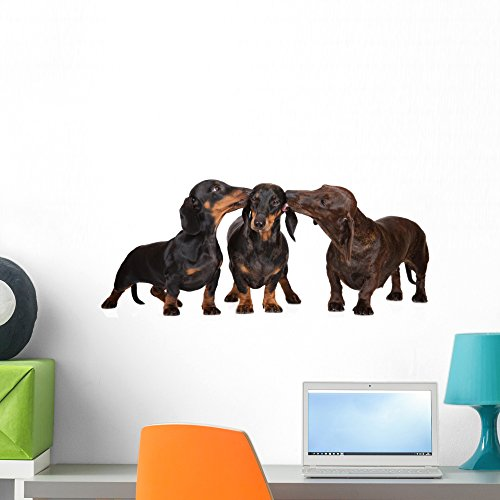 Dachshund Dogs Kissing Wall Decal Peel and Stick Animal Graphics (24 in W x 13 in H) WM359903 ()