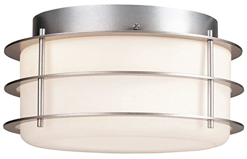 Forecast Lighting F849241NV Hollywood Hills 2 Light Flush Mount Ceiling Fixture, Vista Silver