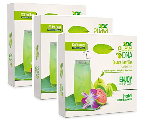 Guava Leaf Tea (360 Guava Leaf Tea Teabags) by MatchaDNA (Image #9)