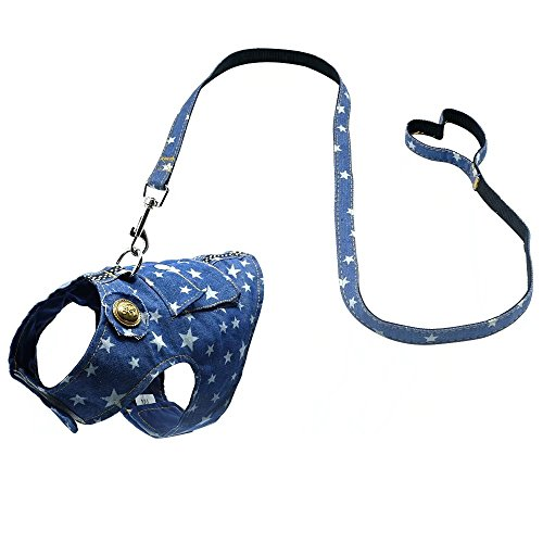 Beirui Denim Dog Harness Vest and Leash Set - Soft Blue Padded Pet Jean Stars Dog Shirt Pet Clothing - Dog Apparel & Accessories with Pocket for Puppy Small Dogs Cat Chihuahua,Teddy,Bichon,Schnauzer