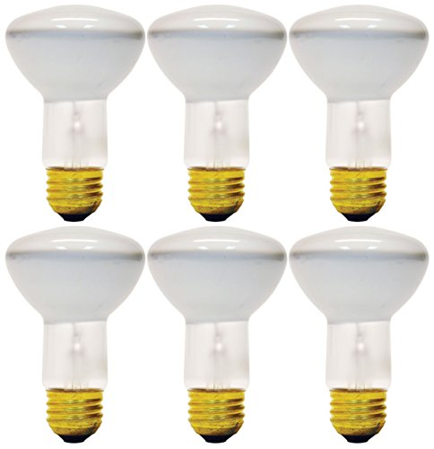 Set of 6 Bulbs GE Soft White Indoor Floodlight, 45 Watt, 350 Lumens, R20 (R20 Floods)