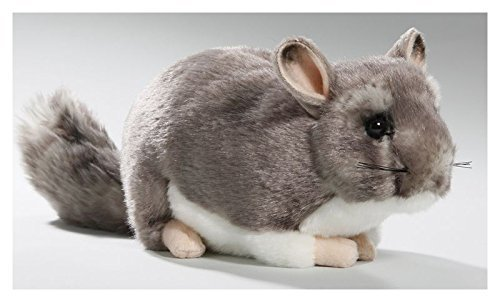 Chinchilla 8.5 inches, 12 inches with Tail, 23cm, Plush Toy, Soft Toy, Stuffed Animal 3040 (Plush Toy Chinchilla)