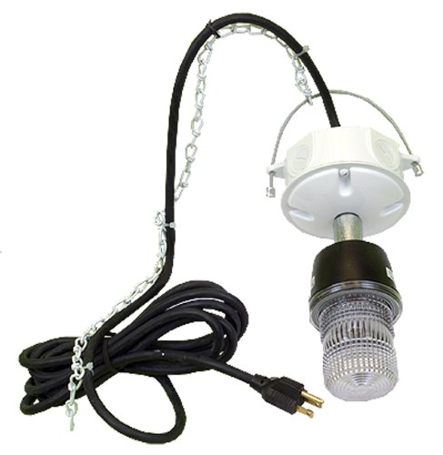 Evictor Strobe Light 10K by Pest Tools