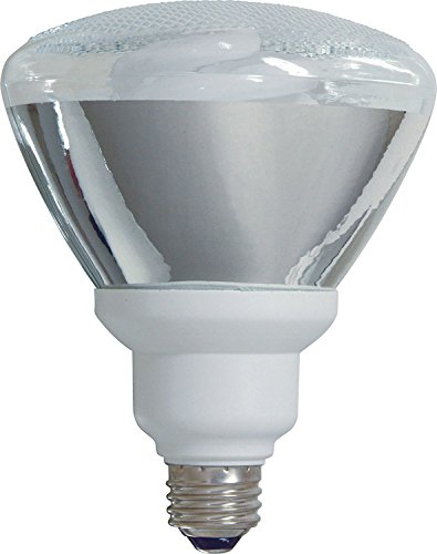 100 Watt Cfl Flood Light