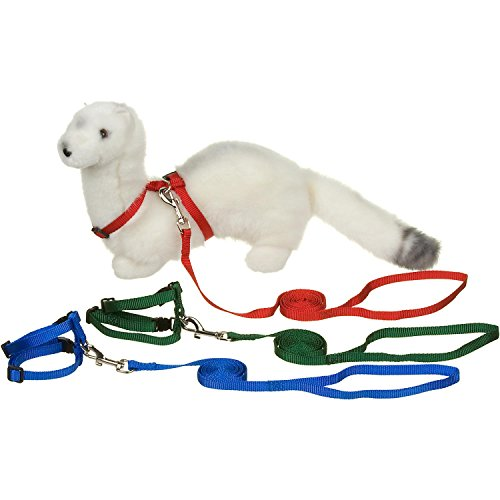 Petco Deluxe Ferret Harness And Lead Set Colorassorted By Ferret