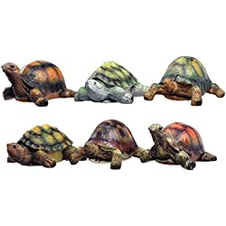 "Set of 6 MayRich 3"" x 1.5"" Resin Tortoise and Turtle Figurines"