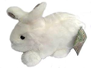 amazon com white baby rabbit hugs by ditz designs one white