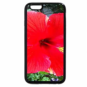 iPhone 6S / iPhone 6 Case (Black) Red Hibiscus