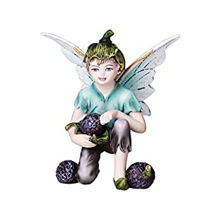 Pacific Giftware Fairy Garden Flower Boy Fairy With Blue Berries Decorative Mini Garden Of Enchantment Figurine 3 Inch