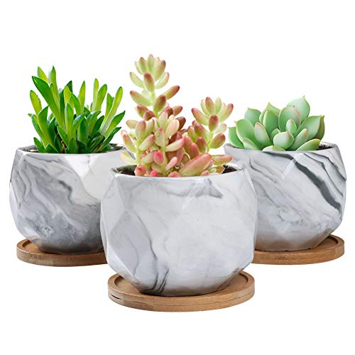 SQOWL 3.2 inch Marble Ceramic Succulent Planter Pot Modern Cute Small Cactus Herb Flower Planters with Bamboo Tray Set of 3