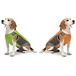 Insect Shield Breathable Mesh Tank Tops (2 Pack) 1-Orange and 1-Green (Large)